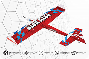 هواپیمای تفریحی woodkite